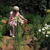 Grandma posing in her garden